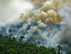 Australia fires threaten the largest sandy tourist island in the world