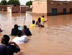 After the wave of floods ... 22 people died of Rift Valley fever in Sudan, amid fears of an outbreak of the disease