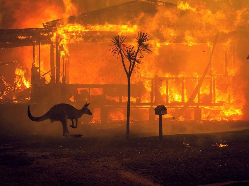 حقائق وتفسيرات حول حرائق استراليا المروعة من الشرارة الأولى وحتى ...