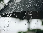 ما هو المطر؟ وكيف يتساقط ؟ وهذه هي فوائد المطر وأضراره