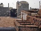 أسراب الجراد تجتاح الهند وتُلحق أضرار كبيرة بالقطاع الزراعي