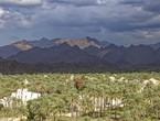 سلطنة عُمان   استمرار تشكل السحب الركامية على أجزاء من جبال الحجر وتركزها في هذه المناطق الأيام القادمة