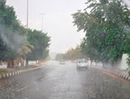 Video | Good rain pervades Taif after days of interruption