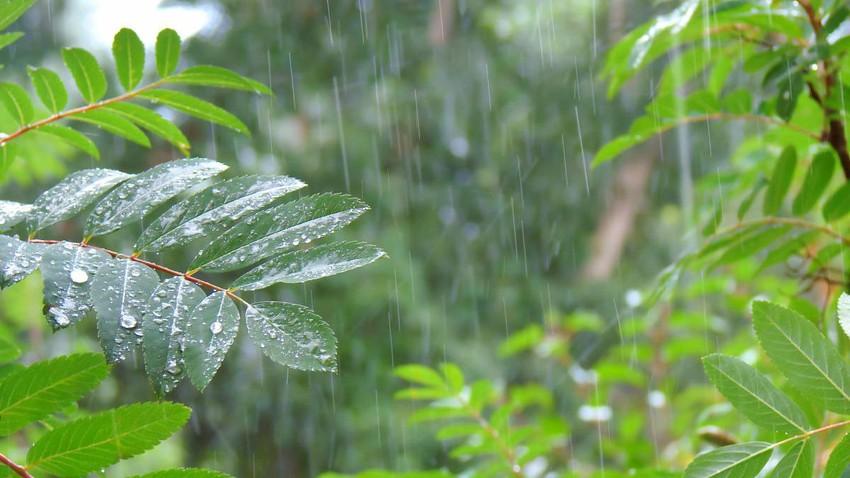 تغير محتمل في حزامالمطر الاستوائي يهدد الأمن الغذائي للمليارات