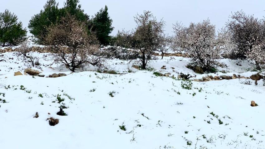 الأردن | الأماكن المعرضة لتساقط الثلوج خلال ما تبقى من عمر المنخفض القطبي