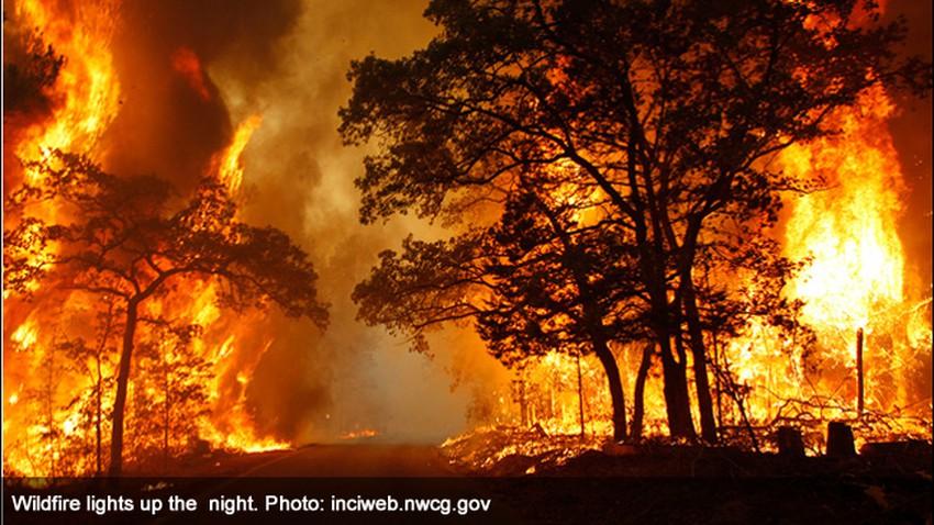 حرائق الغابات.. كيف تبدأ؟ ومادور الطقس في انتشارها؟!