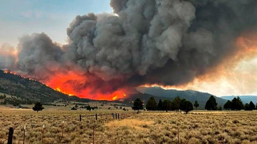 دراسة تكشف ارتباط حرائق الغابات بزيادة إصابات ووفيات فيروس كورونا
