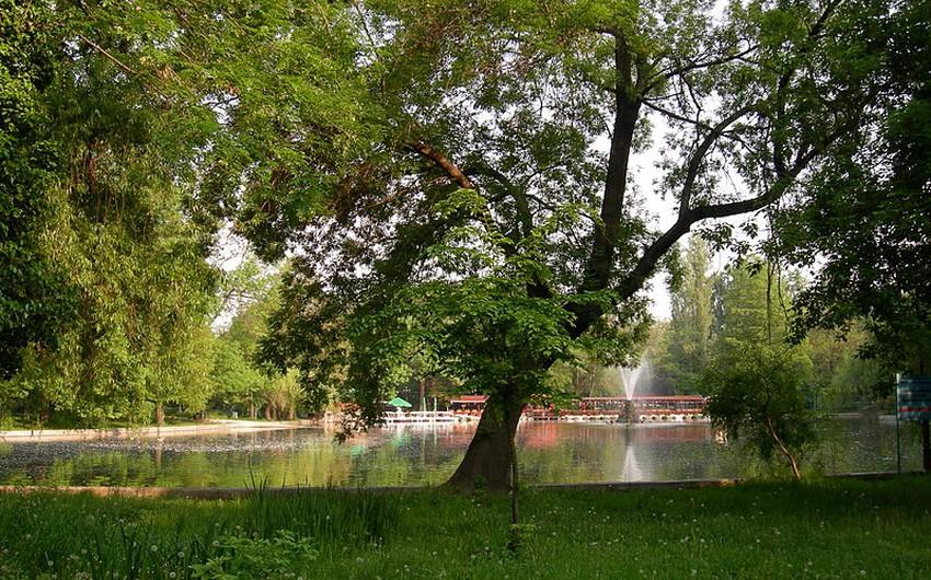 أفضل الأماكن السياحية في بوخارست الرومانية