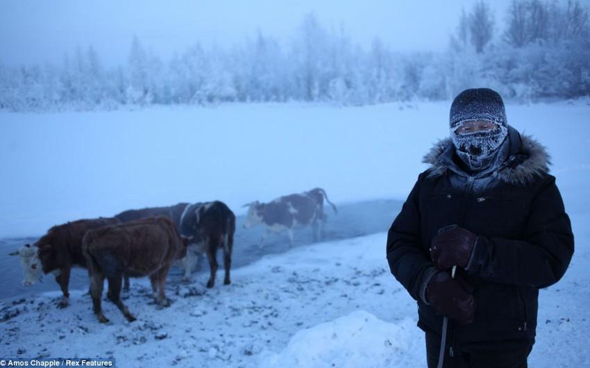 """قرية """"أويمياكون"""" أبرد منطقة في العالم.. بالصور"""