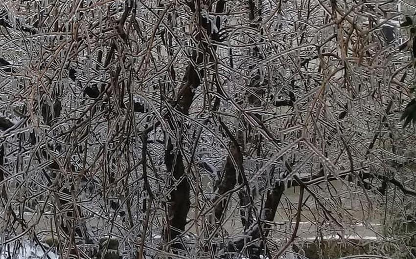 """في ظاهرة نادرة ... شاهد بالصور """"الأمطار الجليدية"""" في عدد من مدن سوريا"""