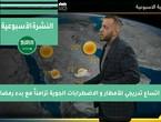 طقس العرب - فيديو النشرة الجوية  الأسبوعية  - (السعودية) ( الأحد - 11-4-2021)