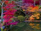 بالصور: 6 أماكن لمشاهدة ألوان الخريف الرائعة  في اليابان