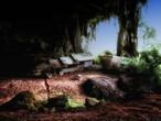 جزيرة برونيو.. سحر الطبيعة في ماليزيا واندونيسا