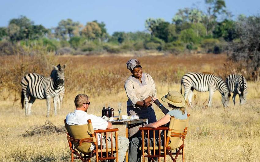 جمهورية بوتسوانا .. أرض السفاري الفاخرة