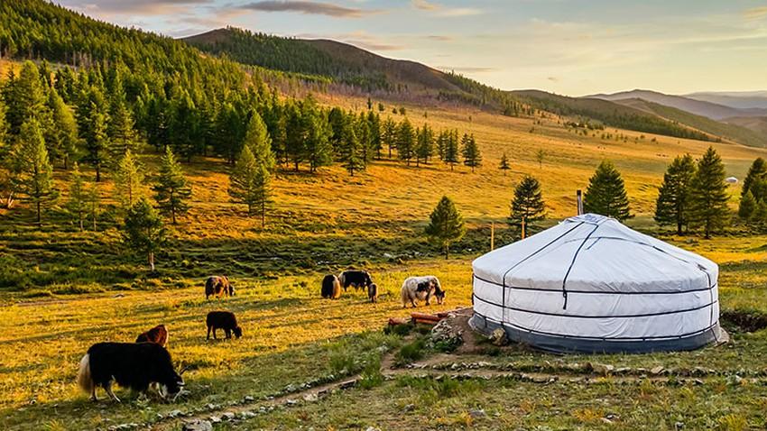 أفضل وقت للسفر إلى منغوليا