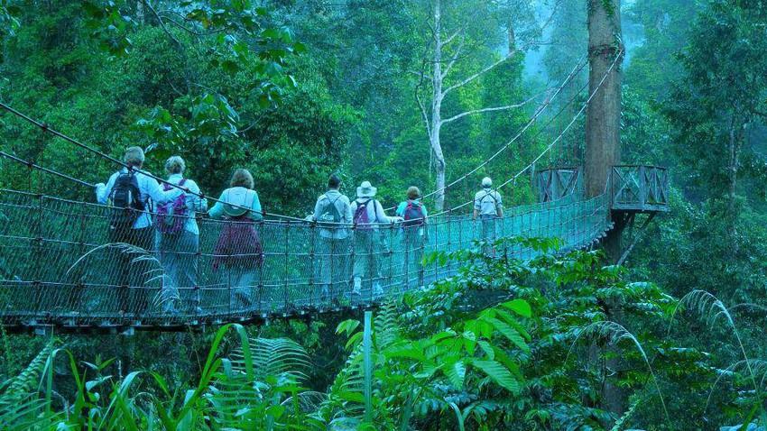 أفضل الشهور لزيارة جزيرة بورنيو .. ماليزيا واندونيسيا