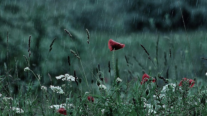 طقس العالم  أمطار غزيرة في أجزاء واسعة من إيطاليا وفرنسا اسبانيا