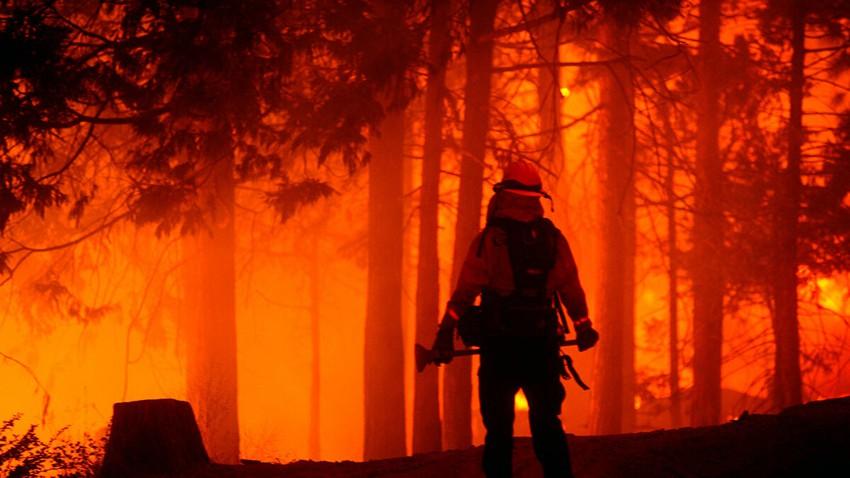 لماذا ارتفعت وتيرة حدوث حرائق الغابات في الفترة الأخيرة