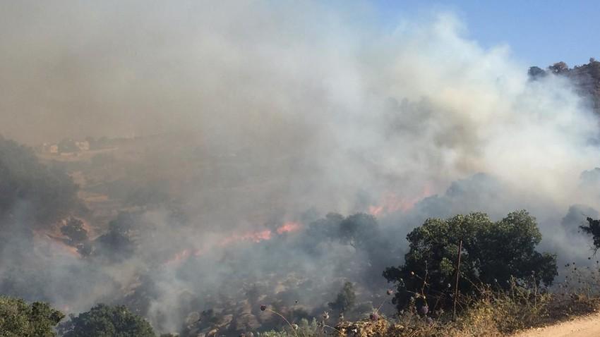 """""""الدفاع المدني"""" (85) حريق لمحاصيل زراعية وأشجار حرجية خلال 24 ساعة"""