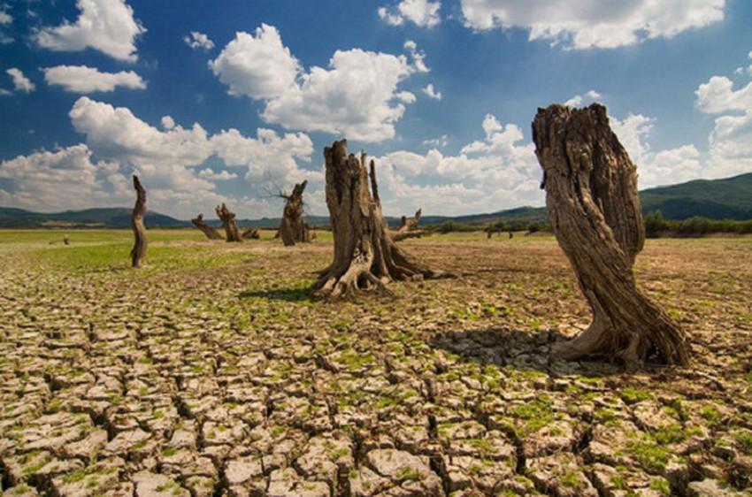 """Résultat de recherche d'images pour """"صور حالة الجفاف بالمغرب"""""""