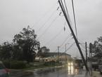بقايا إعصار ديبي تجتاح نيوزيلندا وأمطار غزيرة تغلق الطرق الرئيسية