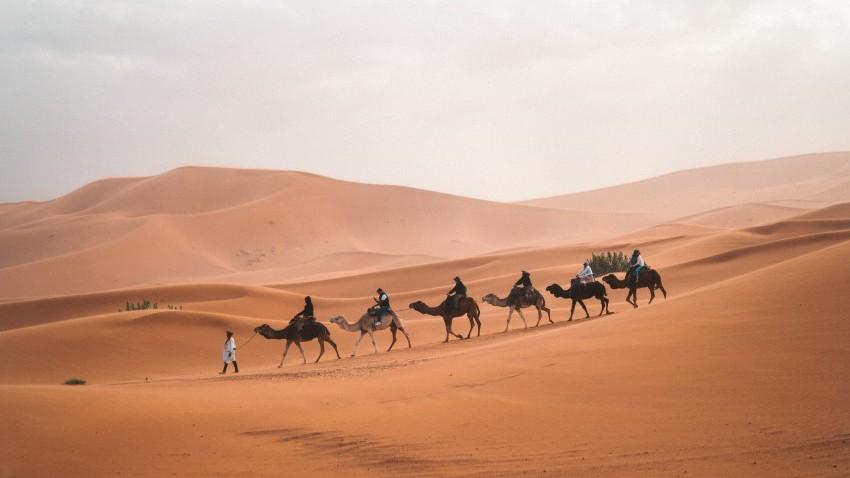مصر | انخفاض اخر على درجات الحرارة ورياح نشطة مُثيرة للغبار في بعض المناطق الثلاثاء