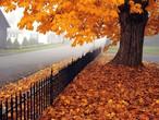 5 أسباب تجعل السفر في الخريف أمرًا رائعًا