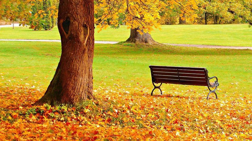 متى يبدأ فصل الخريف ؟