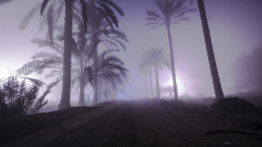 سلطنة عُمان | استمرار تشكل الضباب خلال الاسبوع الحالي على مناطق مختلفة من السلطنة
