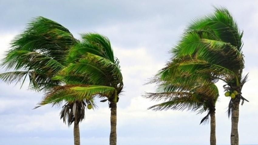 الاردن | استمرار هبوب الرياح الشرقية بشدة متفاوتة طيلة أيام الأسبوع الحالي