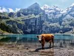 بحيرة أوشينين .. من أجمل البحيرت في سويسرا