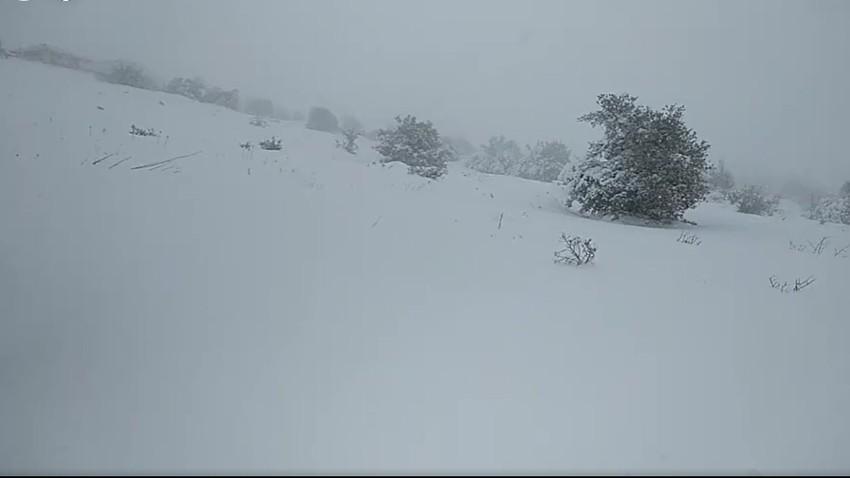 بث مُباشر: الأردن | أكثر من نصف متر سماكة الثلوج في جبال عجلون و الثلوج ما زالت تتساقط