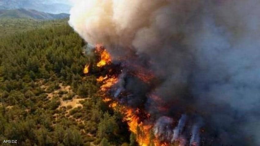 حرائق الجزائر | وفاة 25 عسكريا على الأقل و17 مدنيا في حرائق غابات شرق العاصمة