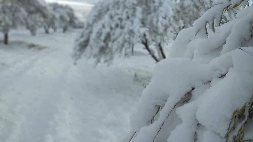 بالصور || تساقط الثلوج أمس في غرب الجزائر بسبب تأثر المنطقة بمنخفض جوي مصحوب بكتلة هوائية قطبية شديدة البرودة