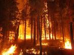 حرائق في كاليفورنيا بسبب الجفاف