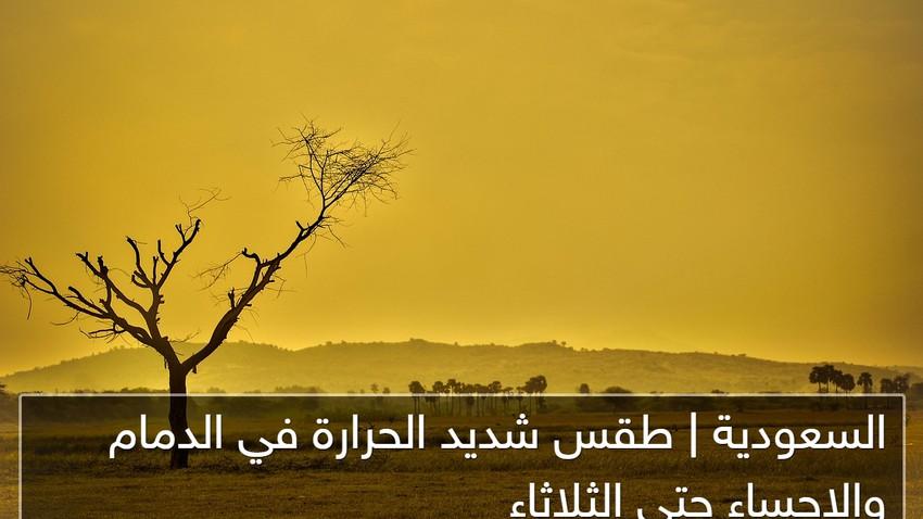 السعودية | الإحساء قد تُسجل 50 درجة مئوية الإثنين والثلاثاء