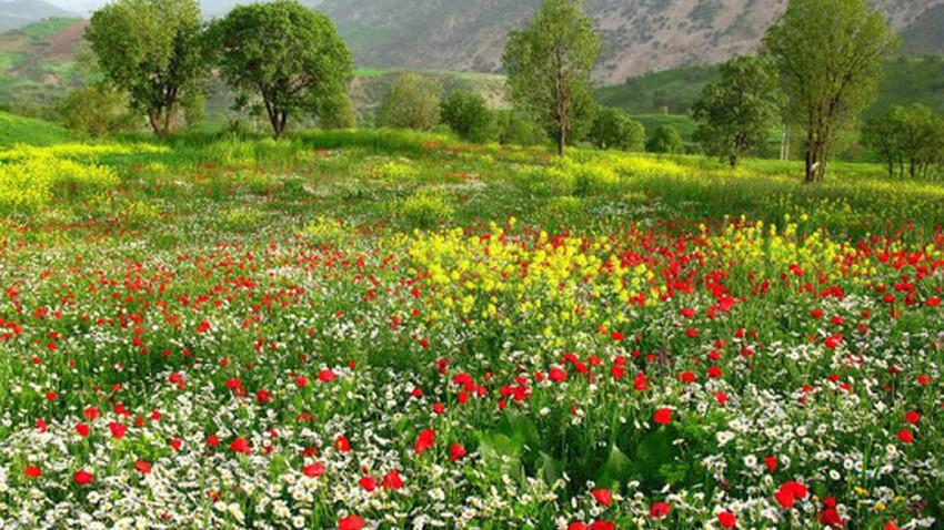 Le mois d'avril, «avril» dans le patrimoine collectif de l'Orient arabe