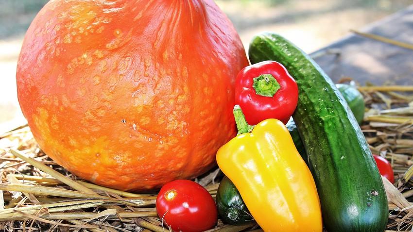 مجموعة من الفاكهة والخُضار يُنصح بتناولها خلال فصل الخريف