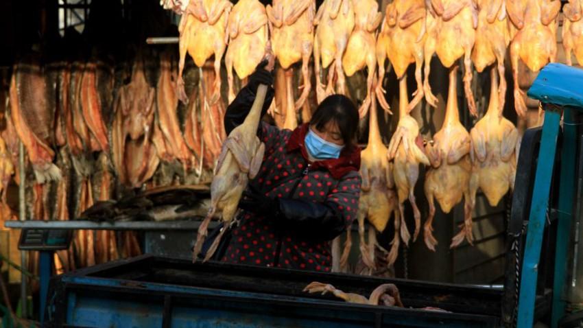 الصين تسجل أول إصابة بشرية مؤكدة بفيروس انفلونزا الطيور H10N3