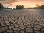 وزير الزراعة السوري: العام الحالي هو الأكثر  جفاف منذ العام 1953م