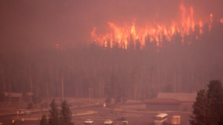 تعرف على اقوى العواصف النارية..الظاهرة الجوية التي تفجر النيران في حرائق الغابات