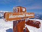 لهواة التزلج فقط .. جبل ماموث في أمريكا