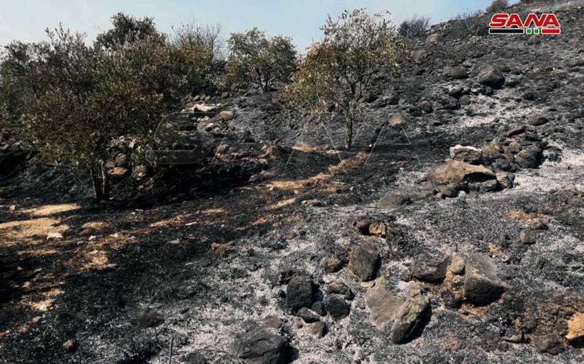 Syria | As temperatures rise ... bushfires are continuing in the west of the country and firefighting teams are fighting to extinguish them