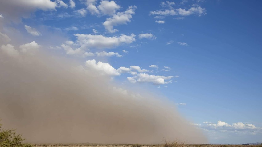 Iraq | A clear drop in temperatures with a remarkable activity of dust-inducing winds