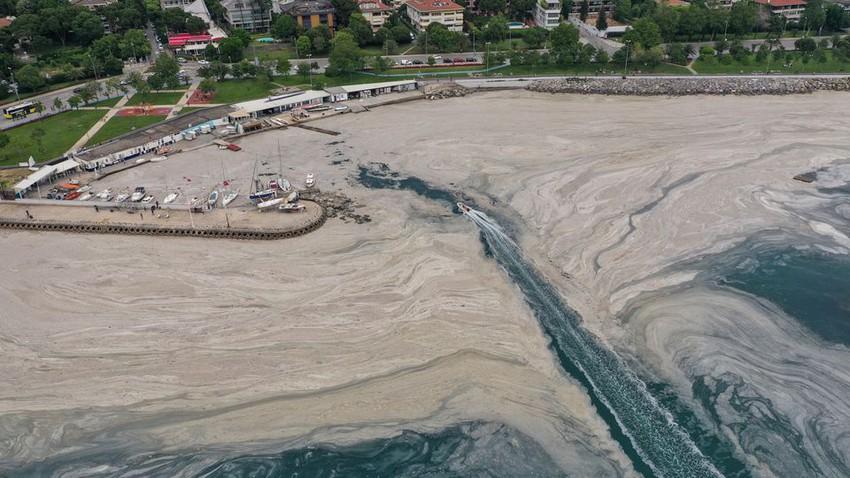 """اتساع الطبقة السميكة من """"صمغ البحر"""" التي تلوث الساحل التركي والسلطات تكافح لتنظيفه"""