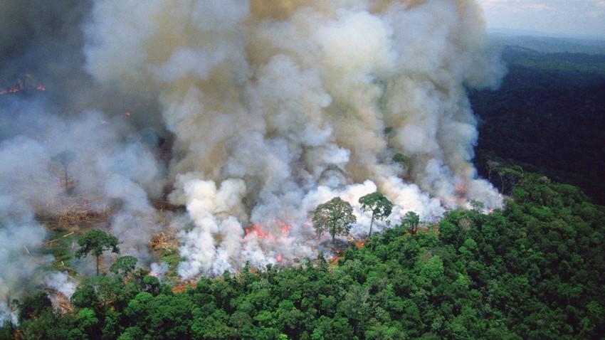 الأردن | الدفاع المدني يتعامل مع حريق اندلع بغابات حرجية بعجلون