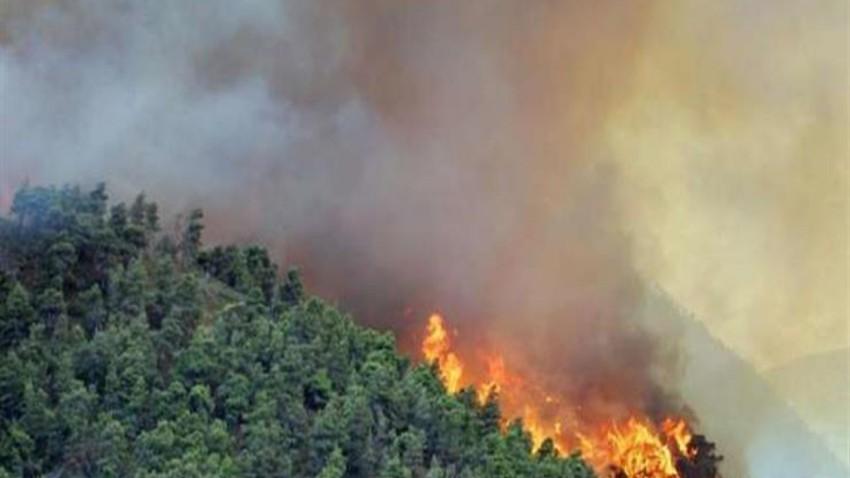 ما علاقة الطقس في الحرائق الأخيرة الحاصلة في بلاد الشام ؟