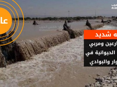 Jordan and Palestine | Severe alerts to farmers in the Jordan Valley and shepherds during the period of the impact of the atmospheric instability