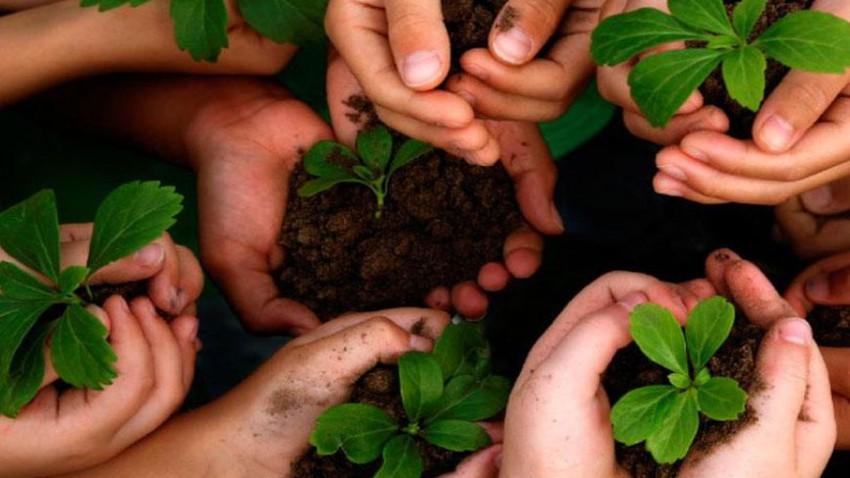 يوم البيئة العالمي، تاريخه وأهدافه