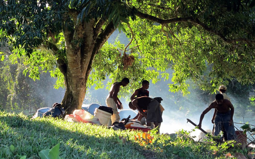 5 أسباب تدفعك للسفر إلى مدغشقر